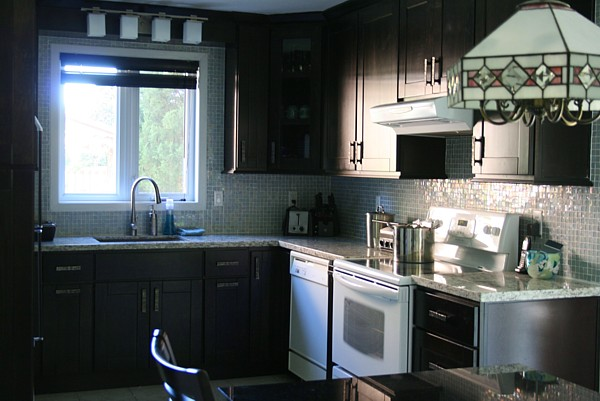Black kitchen cabinets with white appliances decor Kitchens with black appliances