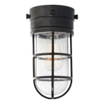 Outdoor Flush Mount Light