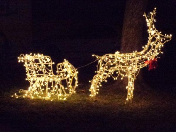 Outdoor Lighted Reindeer