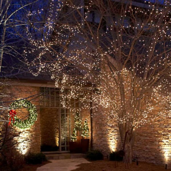 Outdoor Tree Lights Decor IdeasDecor Ideas