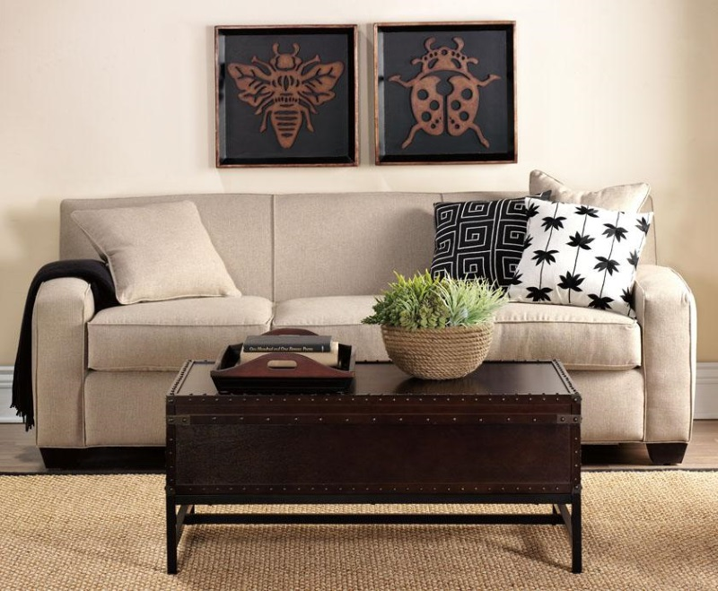 Living Room Trunk Table Decor IdeasDecor Ideas