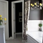 Black and White Bathroom Decor Pictures