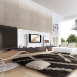Contemporary Living Room Area Rugs Ideas