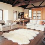 Floor Rugs for Living Room