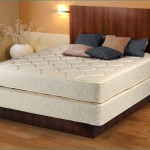 Cheap Queen Size Mattress and BoxSpring Set