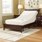 Best Adjustable Bed Frame
