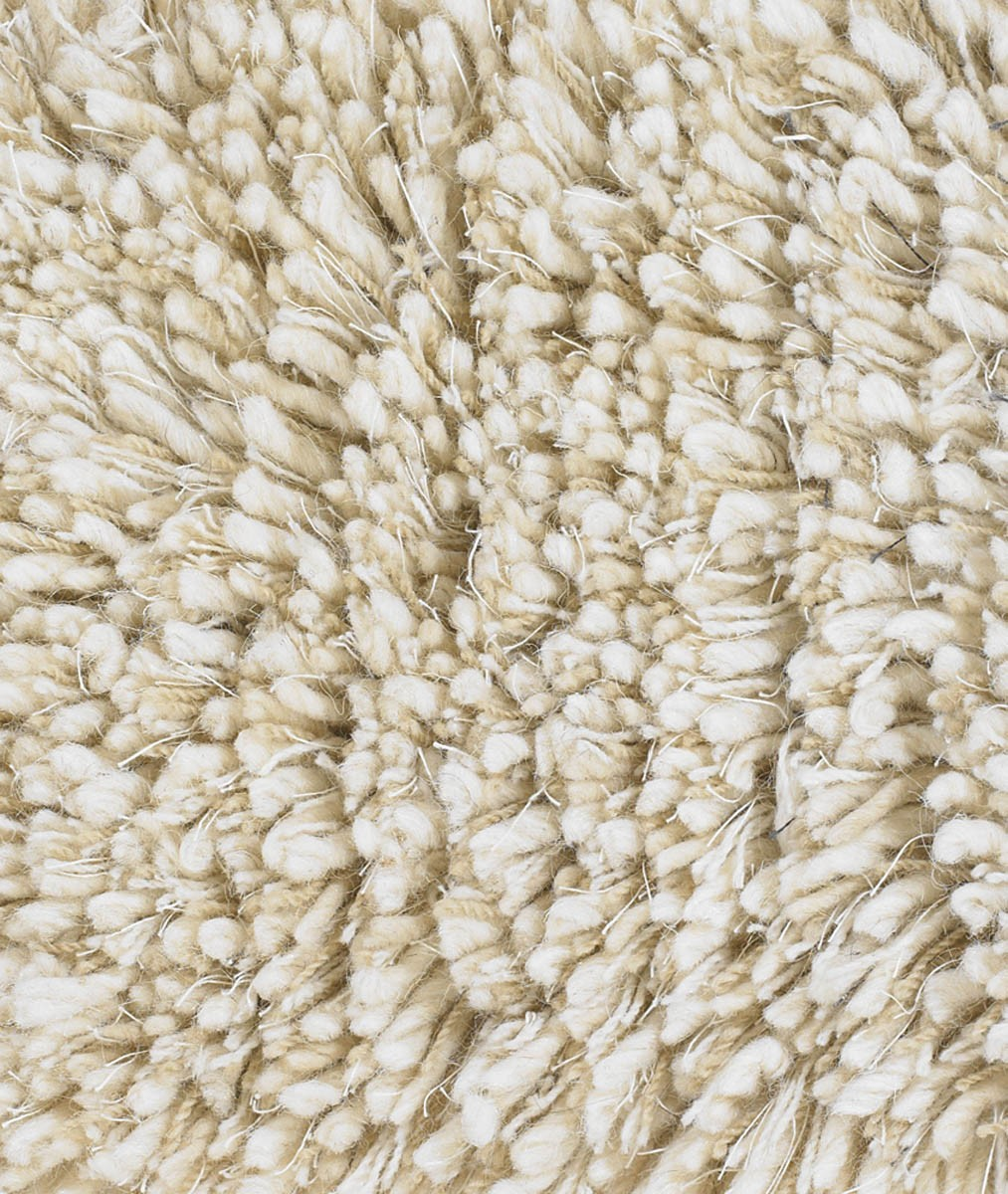 Ivory Shag Area Rug Decor Ideasdecor Ideas