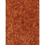 Orange Shag Area Rug