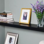 Wall Mount Book Shelves