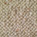 Wool Area Rug Cleaning