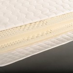 100 Natural Latex Mattress