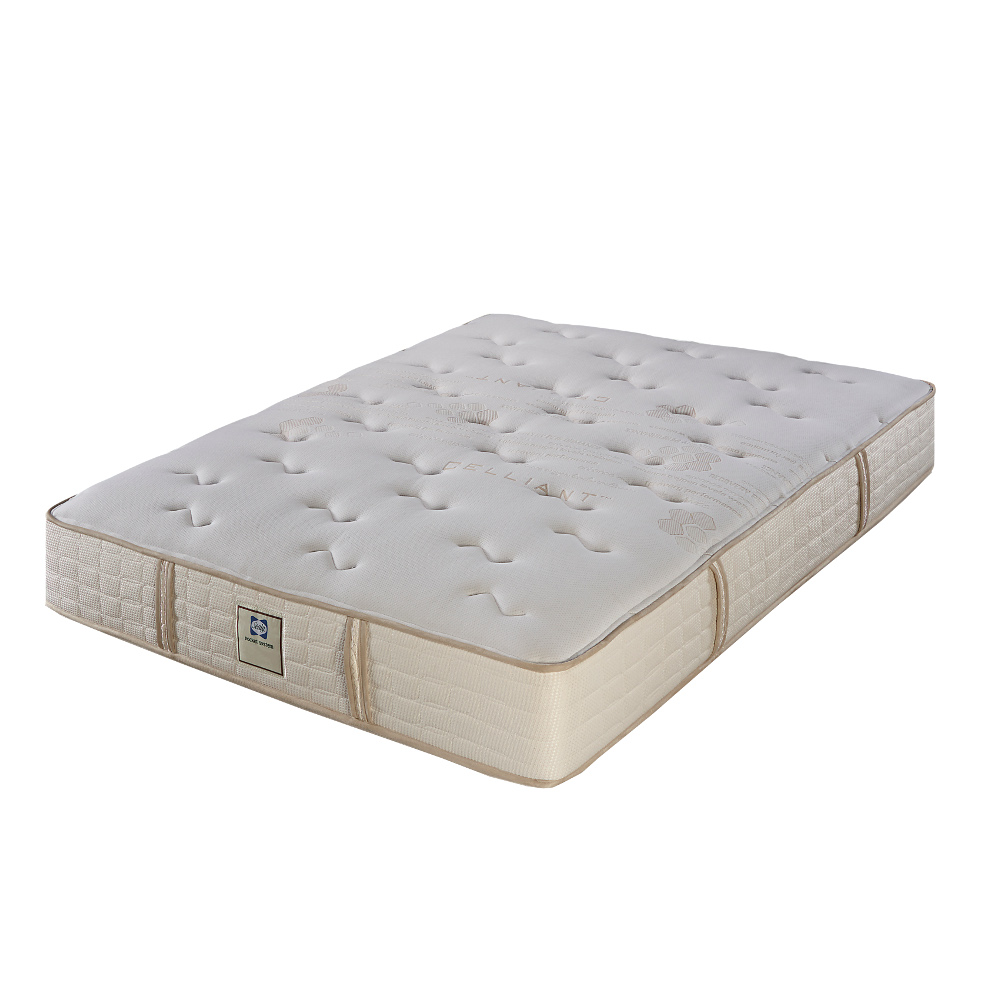 Sealy Latex Mattress
