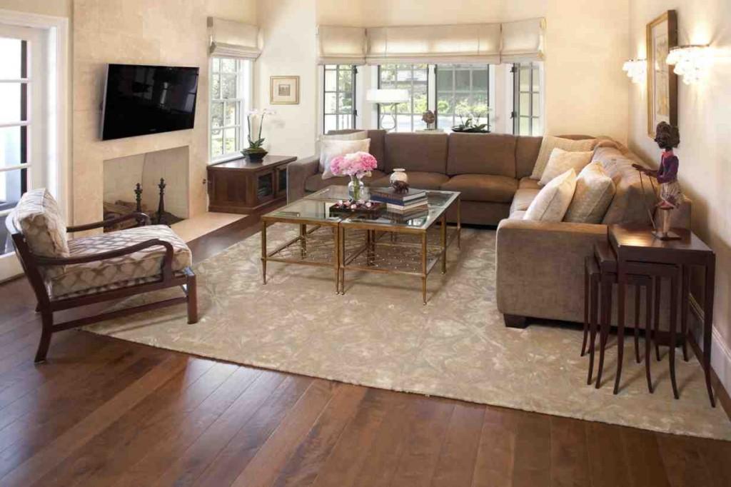 Living Room Throw Rugs