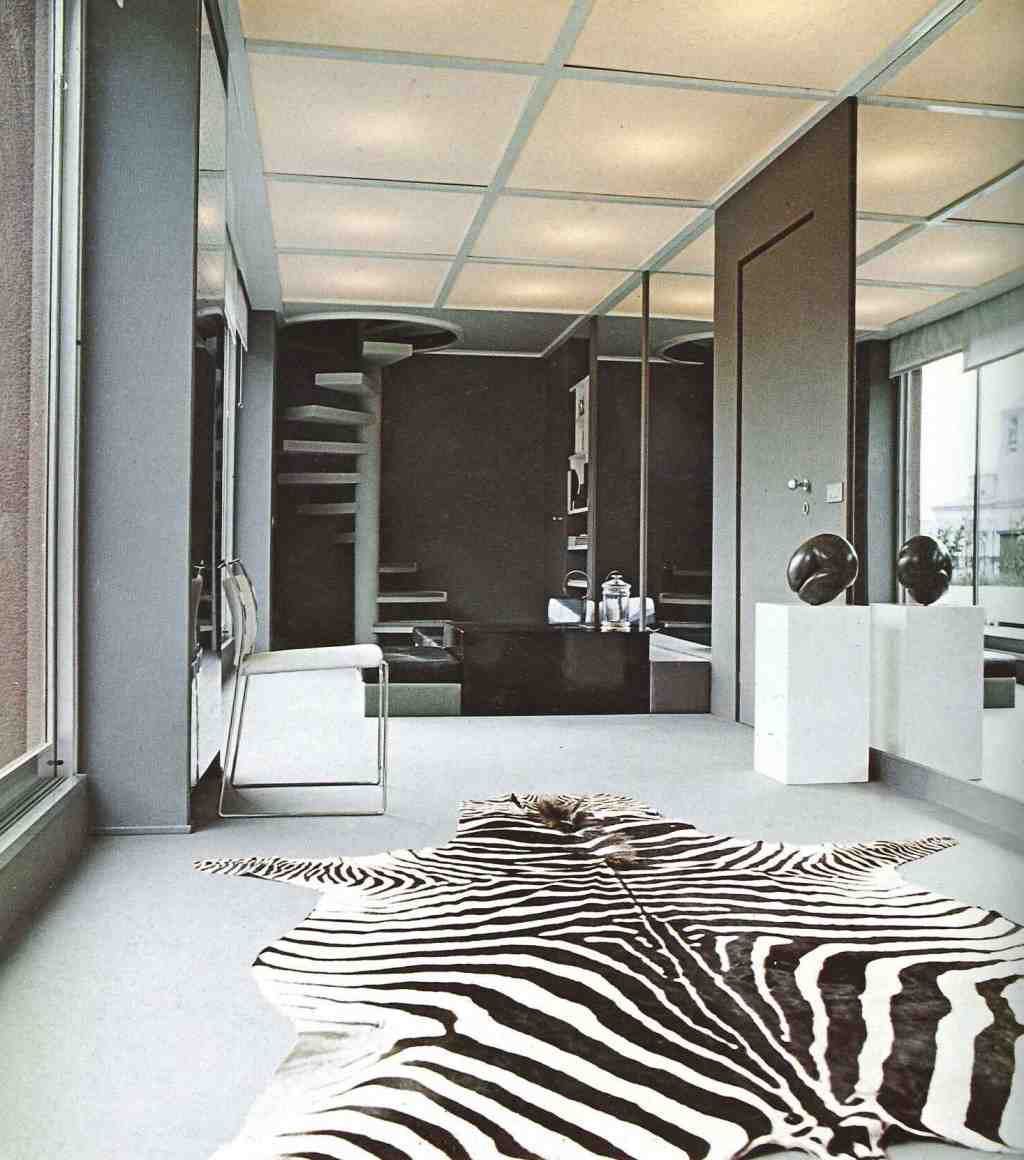 Zebra Living Room Decor Modern House