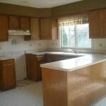 Update Oak Kitchen Cabinets