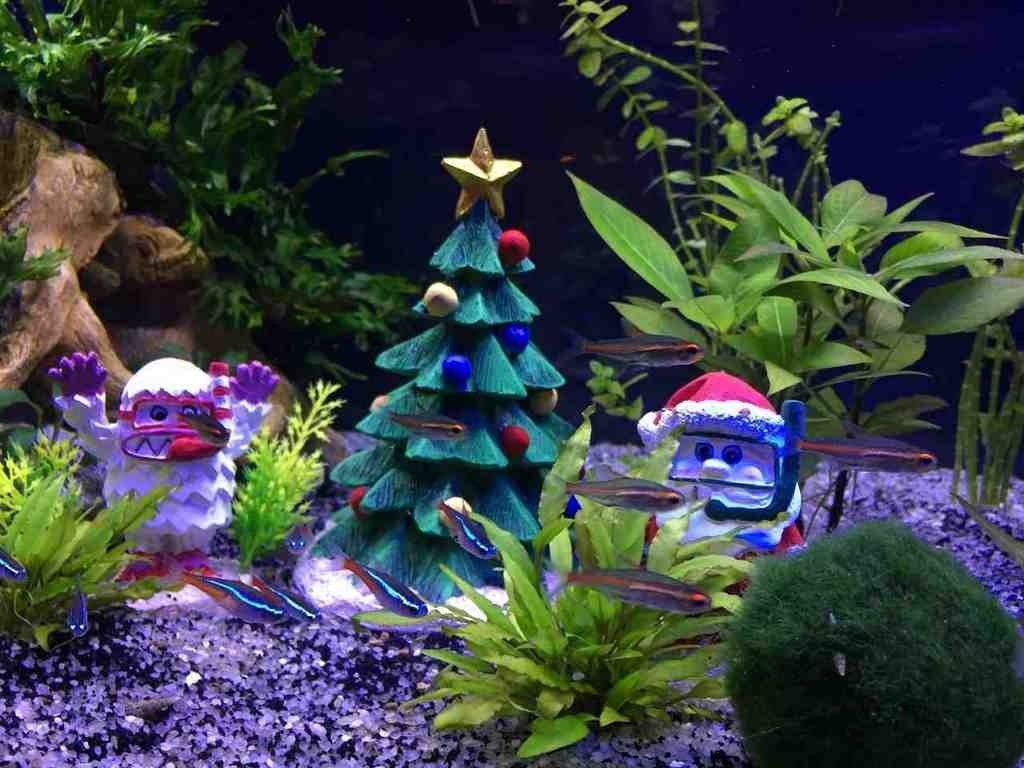 Aquarium christmas decorations decor ideasdecor ideas - Fish tank christmas decorations ...