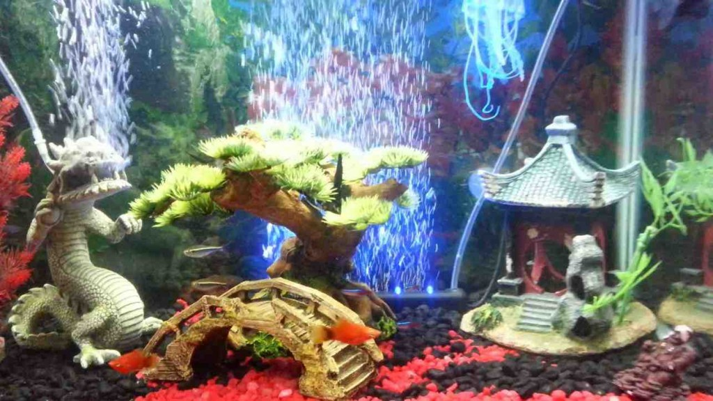 Asian Fish Tank Decorations