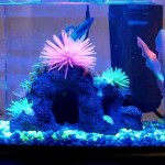 Glofish Aquarium Decorations