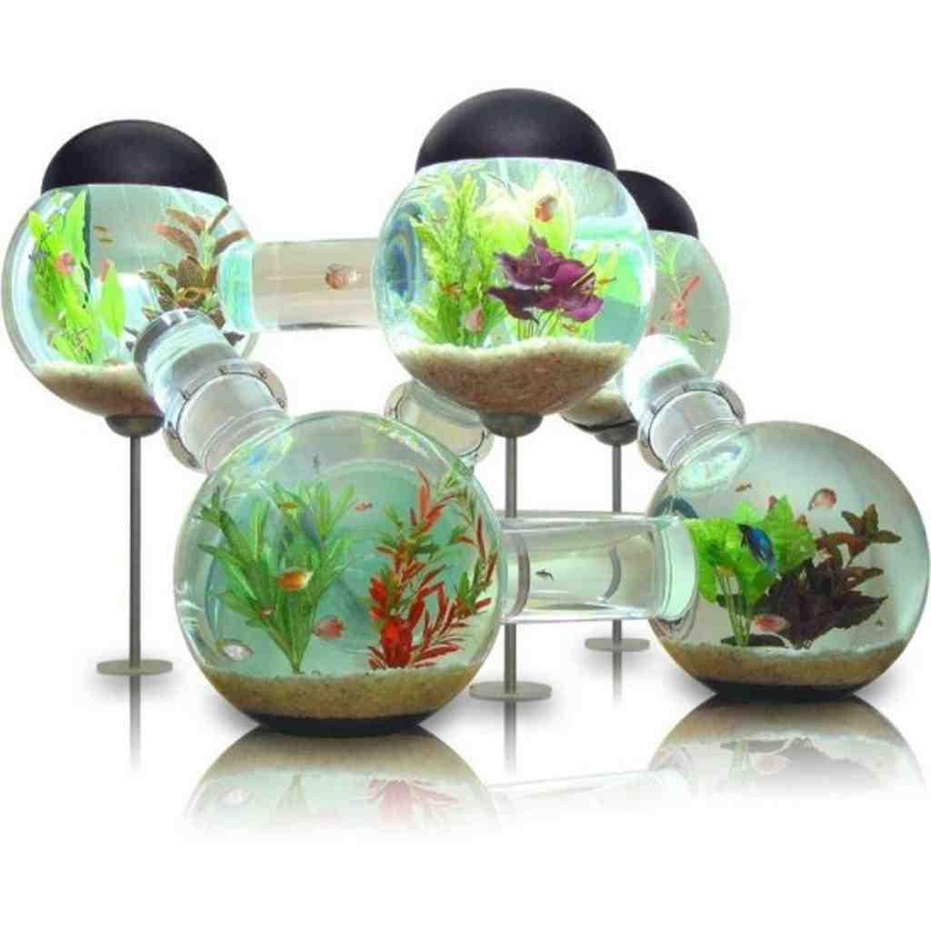 Small Aquarium Decorations - Decor IdeasDecor Ideas