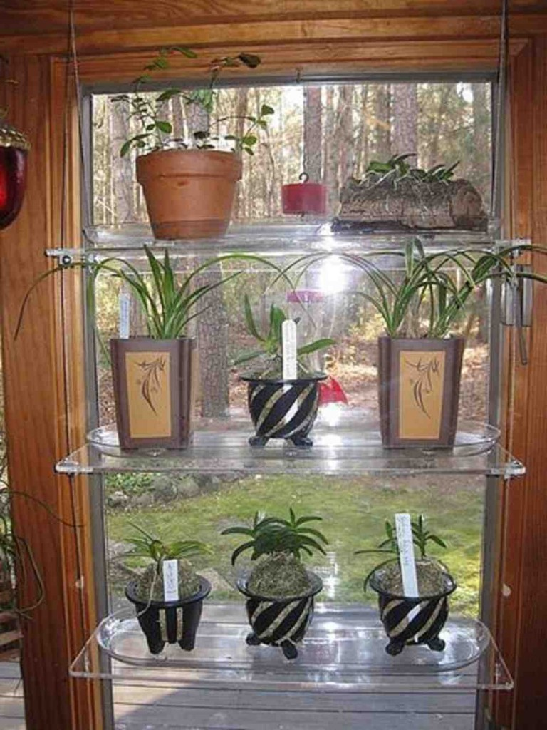 Glass Window Shelves For Plants Decor Ideasdecor Ideas