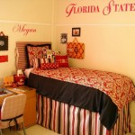 College Dorm Room Decorating Ideas