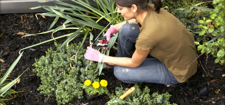 Gardening Decor Ideasdecor Ideas
