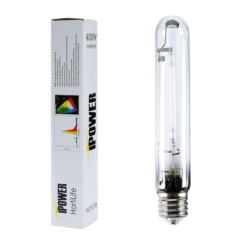 Best Grow Light Bulbs