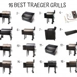 16 Best Traeger Grills