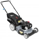Gas Push Lawn Mower Sale