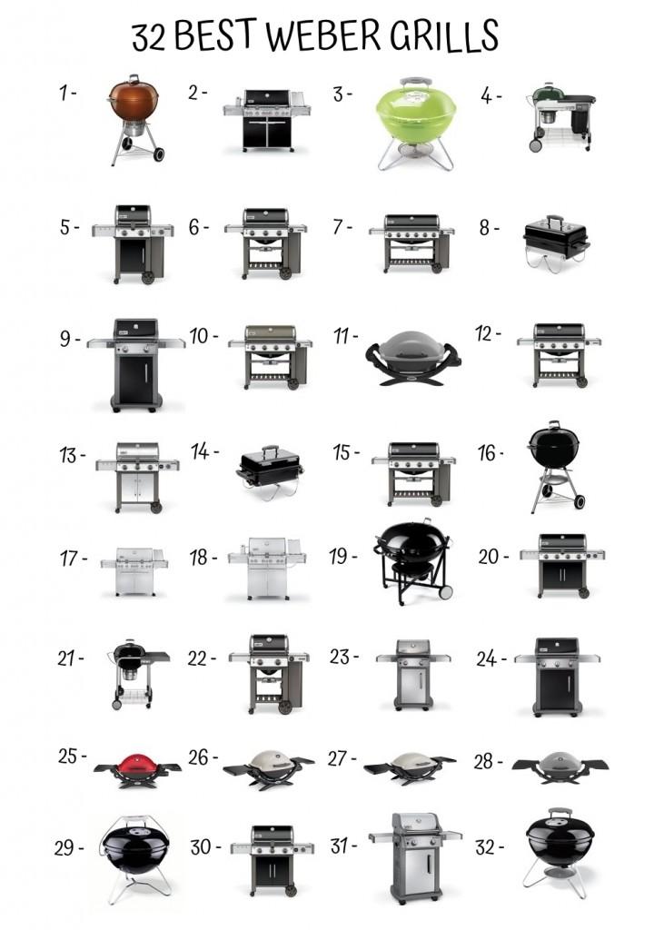 32 Best Weber Grills