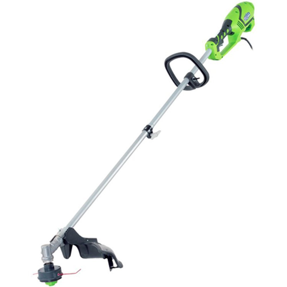 Best Gas Edger