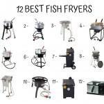 12 Best Fish Fryers