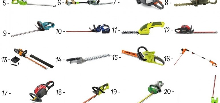 24 Best Hedge Trimmers