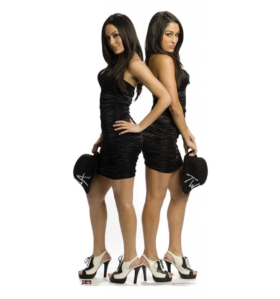 Bella Twins WWE Advanced Graphics Life Size Cardboard Standup
