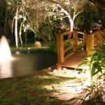 Focus Landscape Lighting