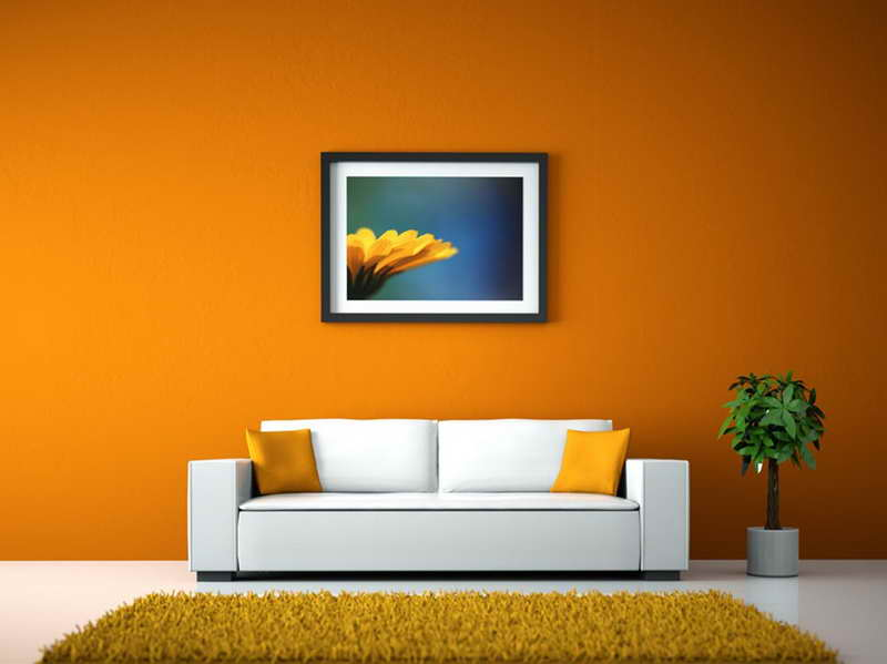 Colors for Walls in Living Room
