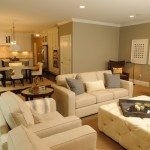 HGTV Living Room Designs