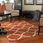 Burnt Orange Area Rug