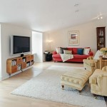 Area Rug Ideas for Living Room