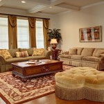 Best Rugs for Living Room