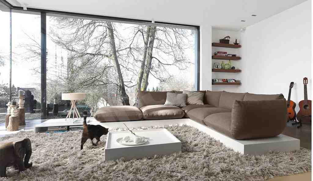 Big Rugs for Living Room - Decor IdeasDecor Ideas