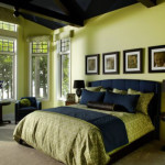 Lime Green Bedroom Decor