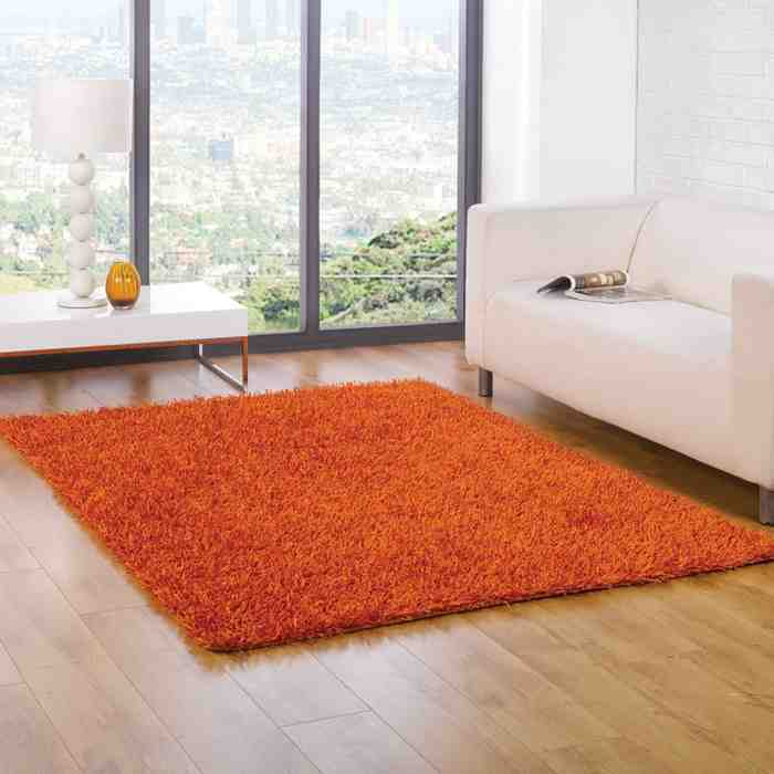 Living Room Rugs UK