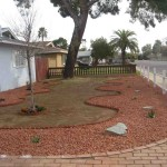 Desert Landscaping Ideas For Front Yard