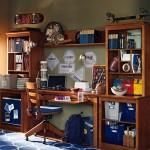 Boys Bedroom Furniture Ideas