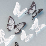 Paper Butterfly Wall Decor