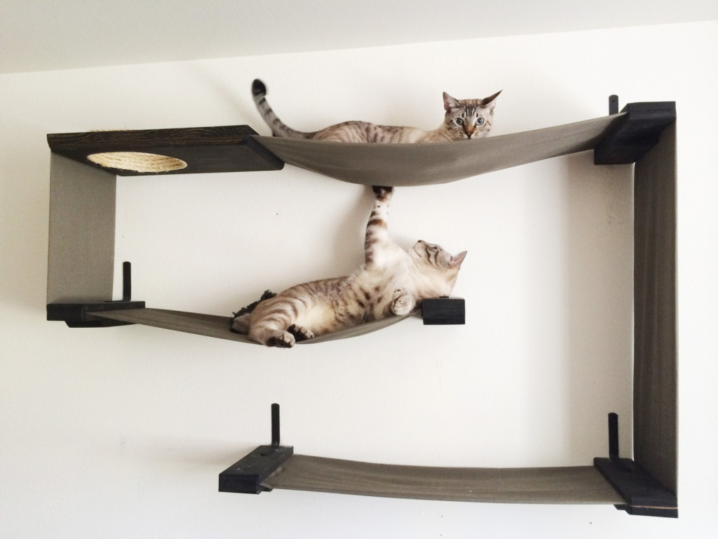 Wall mounted cat shelves decor ideasdecor ideas for Tiragraffi gatti ikea