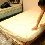 8 Memory Foam Mattress