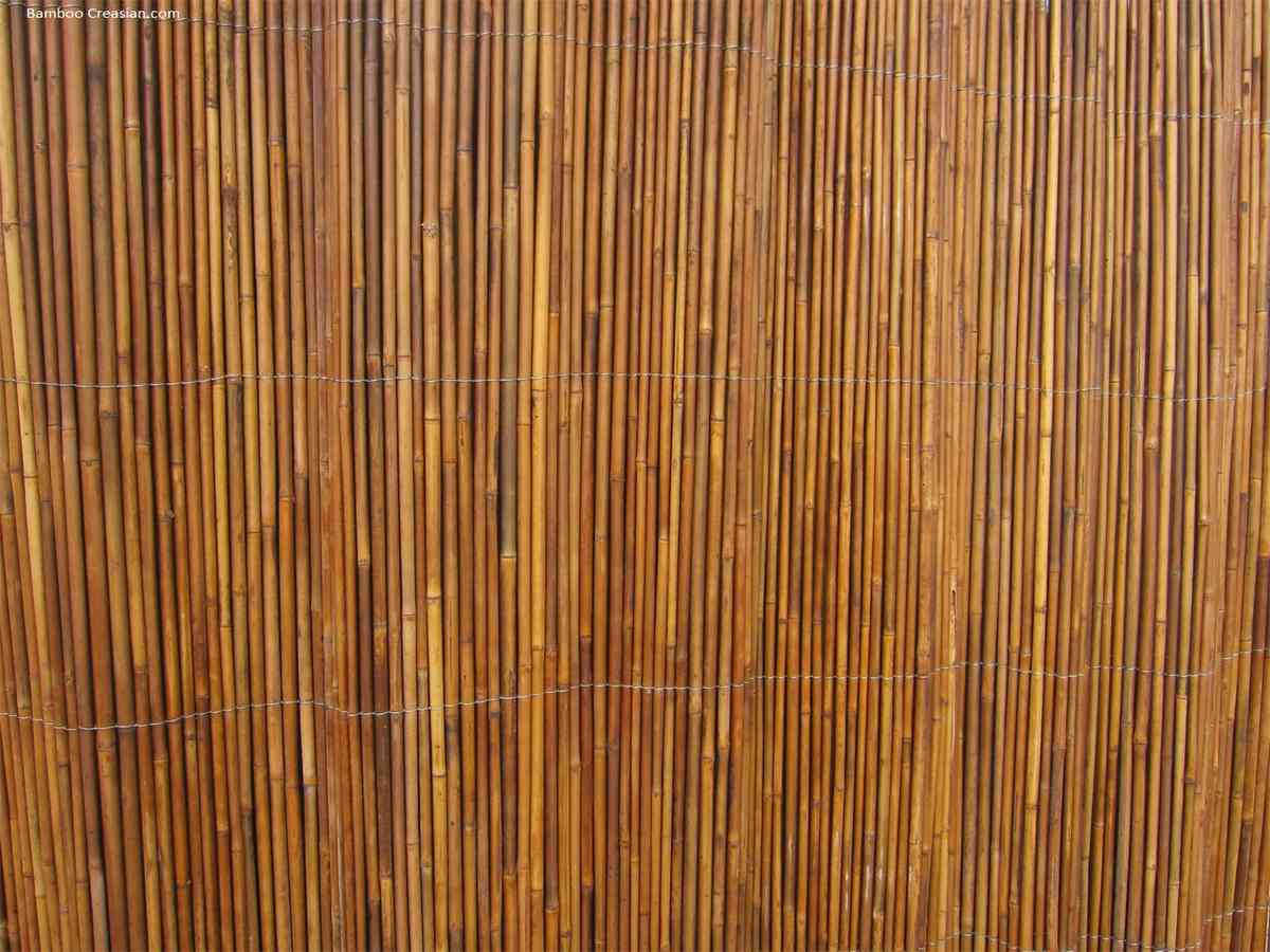 Bamboo Wall Covering Decor Ideas