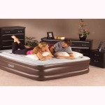 Coleman Double High Queen Air Mattress
